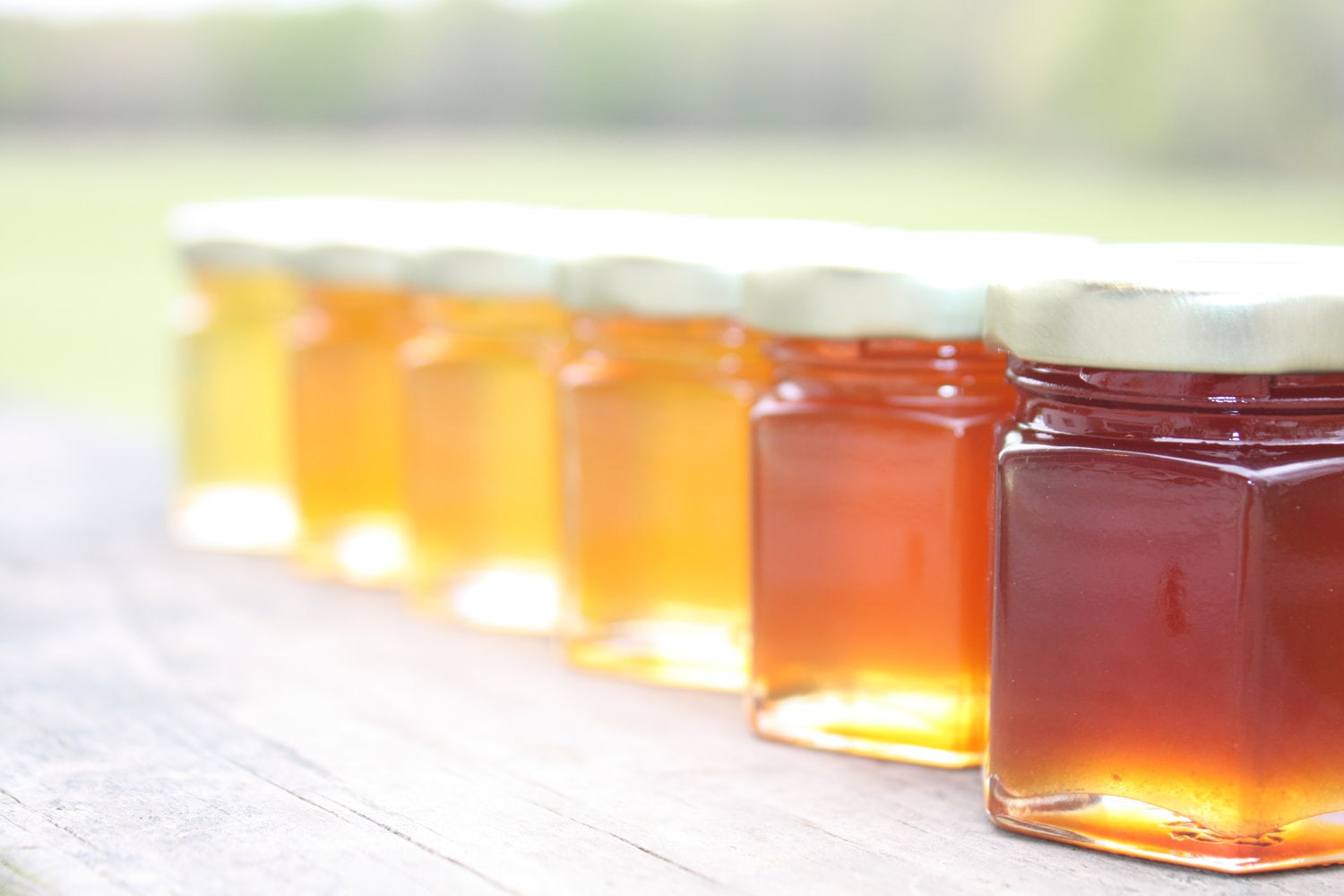 Energy loss and honey production